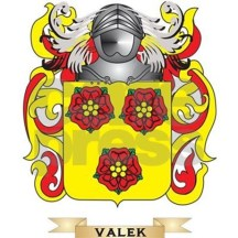 valek_family_crest_coat_of_arms_ipad_sleeve (1).jpg